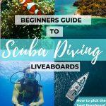 best scuba diving liveaboard