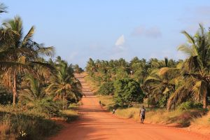 Everything You Need to Know to Drive in Mozambique