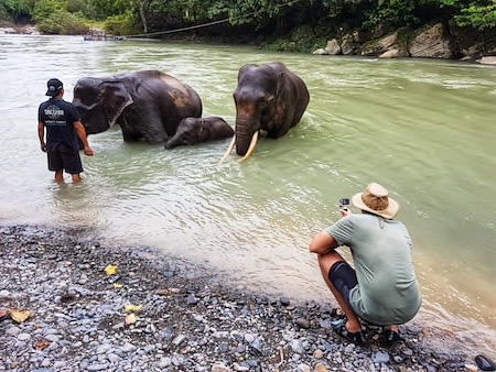 list of ethical elephant sanctuaries to visit